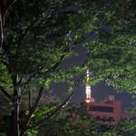 75847749 - 東京タワーが見えます