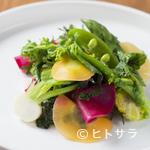 グー ド レザン - 栃木・ベジファームの有機野菜を取り入れた『季節のサラダ』