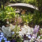 7588461 - お庭に咲く花