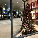 75962917 - ニュウマンのクリスマスツリー