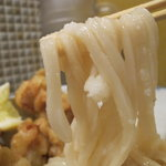 たけうちうどん店 - 麺のアップ