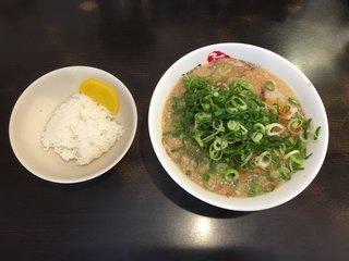 ますたにラーメン 日本橋本店 - チャーシューめん+ねぎ+めん10秒茹で+ご飯3分の1