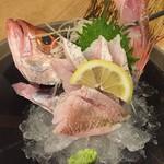 丸善水産 - のどぐろが刺身で食べれる!