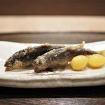虎白 - 料理写真:子持ち鮎笹燻し 銀杏