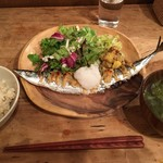 76053010 - 秋刀魚
