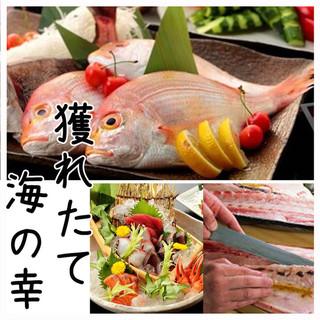 獲れたて鮮魚に舌鼓!美味しいお魚料理をお楽しみいただけます♪