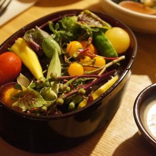 野菜ソムリエの資格を持つシェフのこだわりの創作季節料理