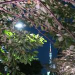 TANGO - 東京タワーが左に見える