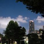 TANGO - ミッドタウン公園を通って