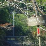 菜心味庵 きた岡 - 道はかなり狭いですよ!