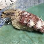 第三春美鮨 - 蝦蛄 特大 雄 刺し網漁 北海道石狩湾 塩で
