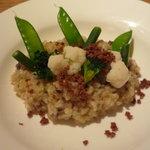 メルロ・パノニカ - 季節野菜の玄米リゾット