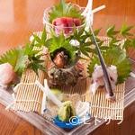 馬やど - 日本海の季節の幸が集う!『山陰沖産 本日のお造り盛り合わせ』