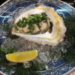 すし岩 - 熊本産、岩牡蠣