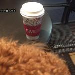 スターバックス・コーヒー - 抱っこしながらコーヒーブレイク