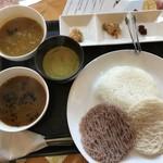 ペレーラ・ボジュン - 料理写真:野菜カレー、チキンカレー