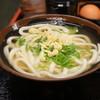 Teuchijuudanudombakaichidai - 料理写真:かけうどん