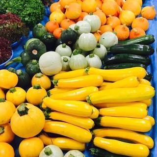 取り扱う野菜は新鮮で種類豊富な鎌倉野菜
