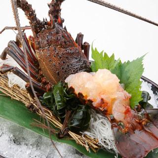 【全コース伊勢海老つき!】新橋で味わう贅沢海鮮