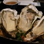 海鮮どんぶり亭 - 料理写真:岩ガキ