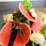 76402575 - 鎌倉野菜の彩りハーブサラダ&秋鯖のリエット