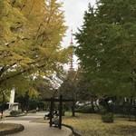 芝大門 更科布屋 - 銀杏越しに見る東京タワー