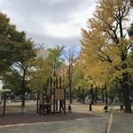 芝大門 更科布屋 - 芝公園の銀杏が色づき始めました