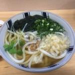 黒田屋 - 料理写真:かけうどん 午後2じまでは190円