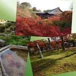 76598020 - 秋の東福寺