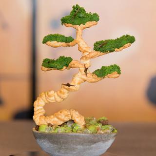 四季折々に変化し季節感を味わえる盆栽に見立てたデザート