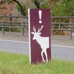 メインダイニングルーム 三笠 - 今から鹿に会いに行きます