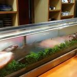 魚菜 もも - 長いネタケース