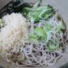名代 箱根そば - 料理写真:冷やしたぬきそば