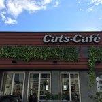 キャッツカフェ - 外観
