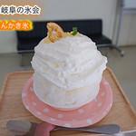 76751578 - 大和の柑橘あんかき氷