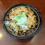 そば処 ながみ - 料理写真:天ぷらそば