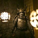 京極忍びの里 - 将軍の間 甲冑