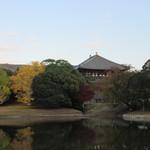 吉野本葛 天極堂 - 正倉院側からの大仏殿