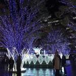長浜屋台 やまちゃん - (おまけ) JR博多駅前(1)  冬は特に綺麗ですよ〜。
