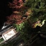 76862799 - お部屋からの眺め    能舞台と紅葉、池