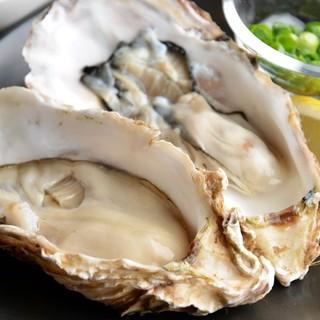 ★新鮮な牡蠣をご提供!生牡蠣も有ります♪