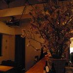 hakoniwa - お店にそびえる桜の木 関西のボタン桜だとか