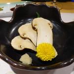 柳家錦 - 熊本の名残の松茸の刺身