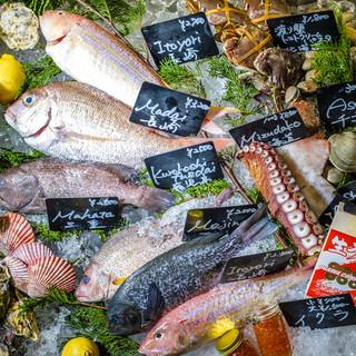 アイスベッドから見て・選んで・食べれる魚介♫
