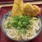 金比羅製麺 - ひやぶっかけ細めうどん イカ天レンコン天のせ