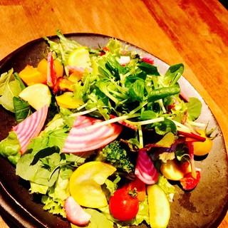 八ヶ岳から直送!新鮮有機野菜