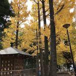 77201591 - 将棋堂と銀杏も風情があります
