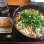 うどんちよ志 - 料理写真:カレーうどん 特大