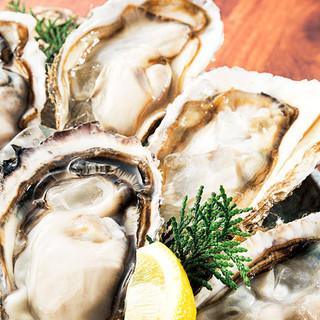 旬の牡蠣をオホーツク海から鮮度抜群な状態でお届けします!