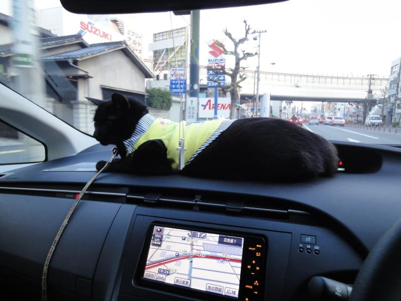 オロチョンラーメン  横川店